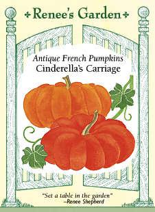 Pumpkin-cinderella-f