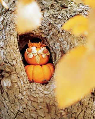 0206_kids_owlpumpkin_xl